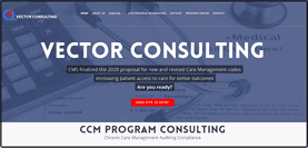 """<p align=""""center"""">ccm program consulting chronic care management</p> Vector Consulting is a chronic care management program consulting firm providing auditing and compliance of chronic care management programccm program consulting chronic care management"""